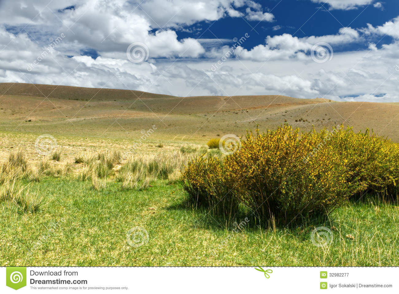 Altai: Steppe Hills Clouds Royalty Free Stock Photography.