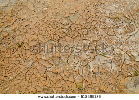 Green Grass Dry Desert Stock Photos, Royalty.