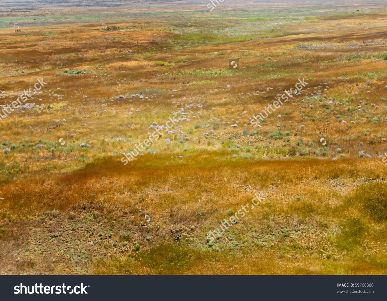Steppe Landscape.