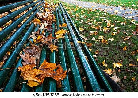 Stock Image of dry leaves covering empty bench in park de Bude.