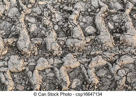 Stock Photos of Dry Cracked Mud With Tire Tracks.