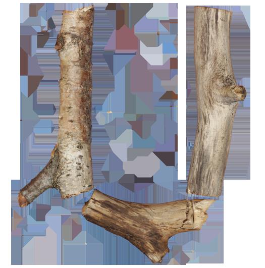 Clipart letter fonts logs twigs.