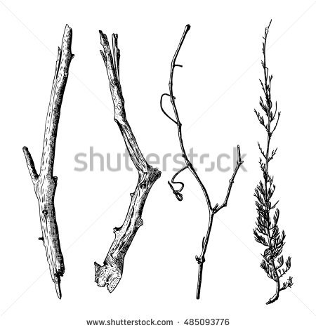 Dry Stock Vectors, Images & Vector Art.