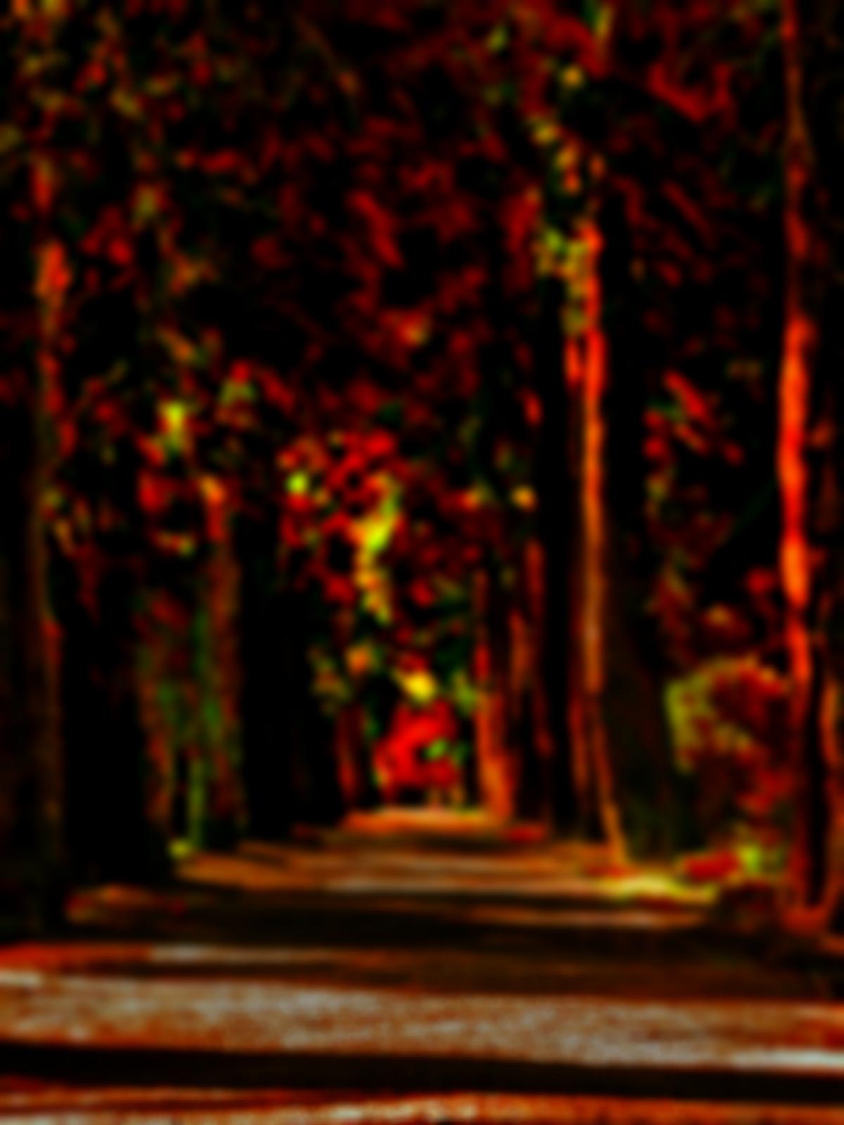 Dynamo Editing : Picsart Real CB Editing tutorial.