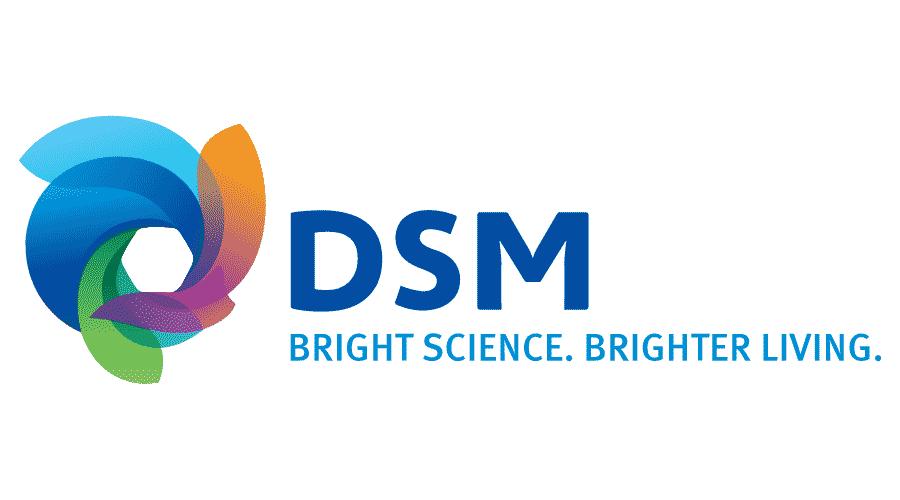DSM Vector Logo.