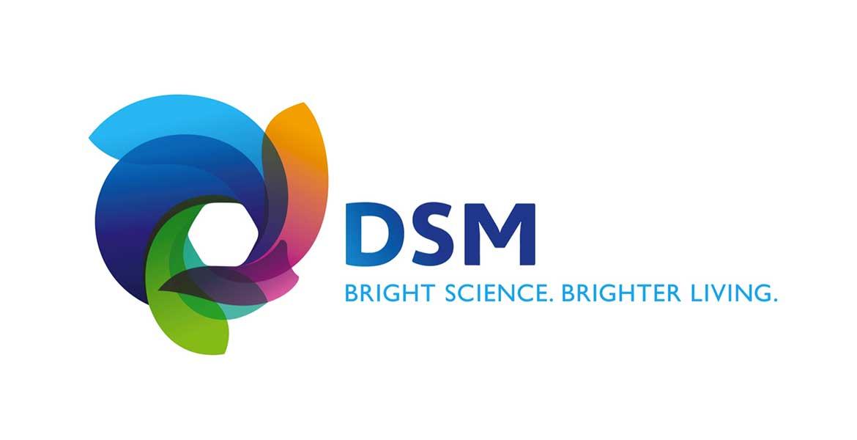 Dsm Logos.