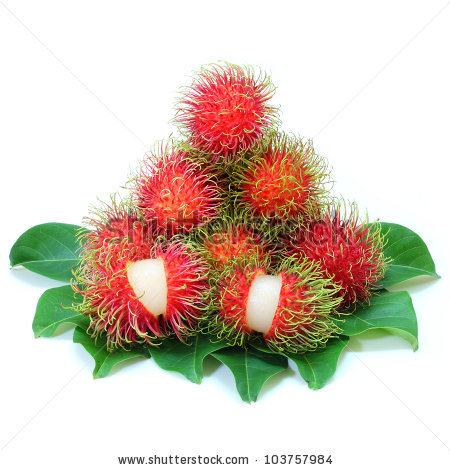 Fruit rambutan free stock photos download (2,208 Free stock photos.