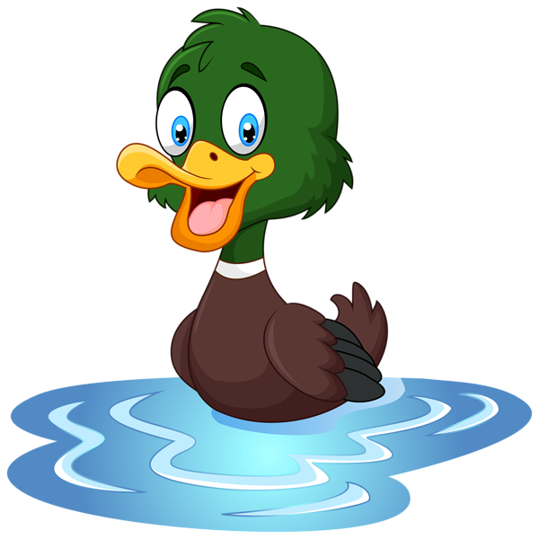 Duck clipart real duck, Duck real duck Transparent FREE for.