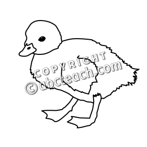 The Black And White Drawing Baby Ducks Pictures to Pin on.