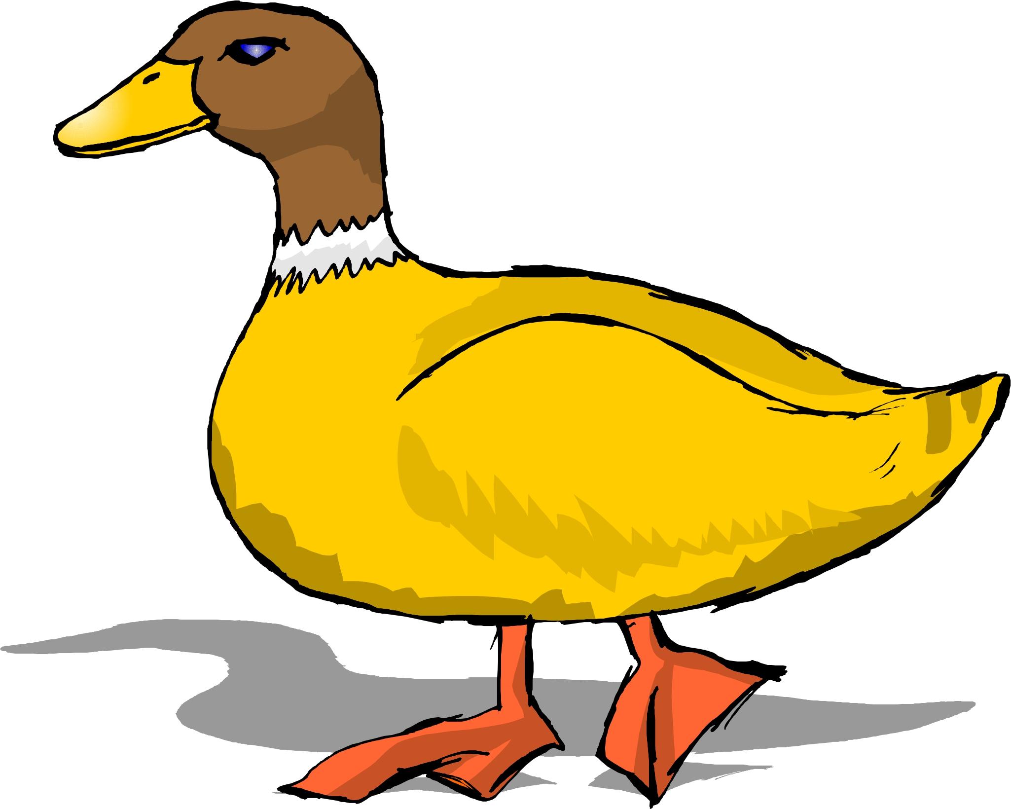 Duck Clip Art For Kids.