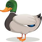 Duck Clipart EPS Images. 11,154 duck clip art vector illustrations.