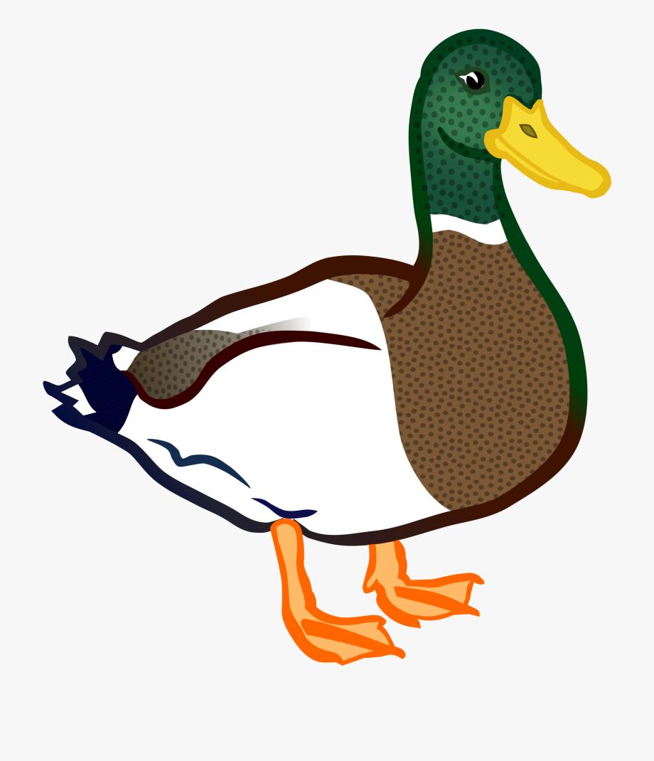 Duck Clipart Clip Art.