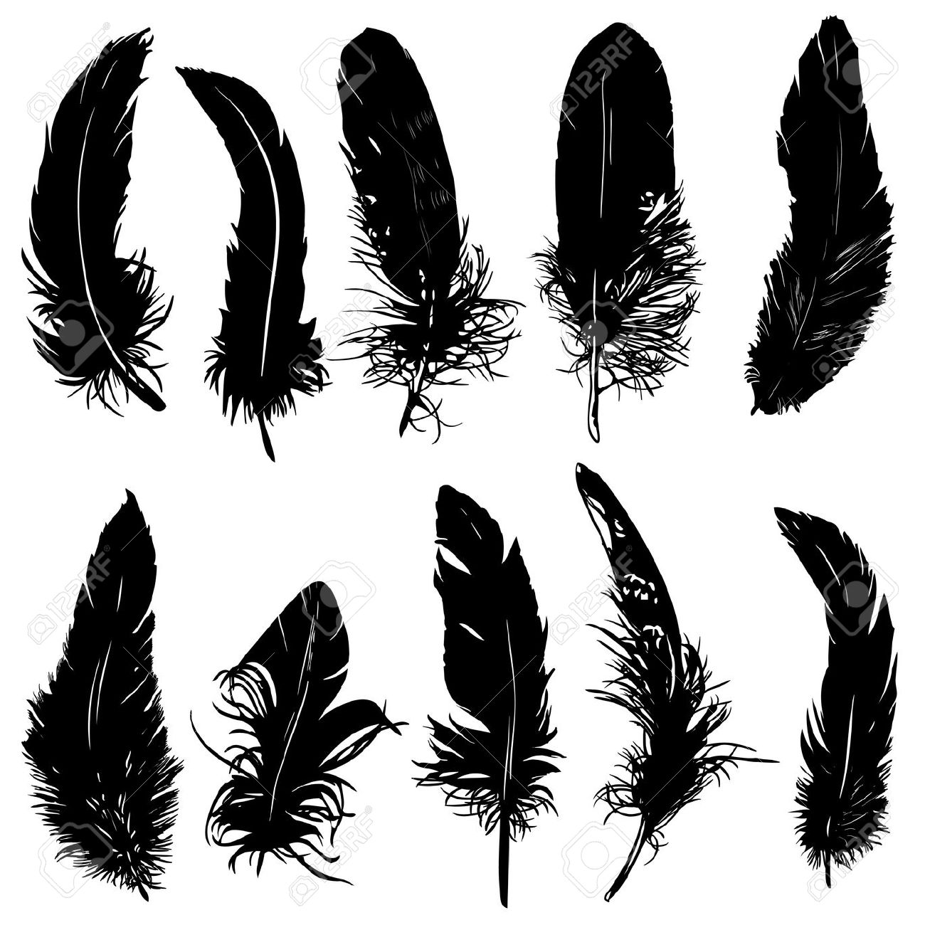 Feather silhouette clipart.