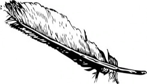 Feather Clipart.