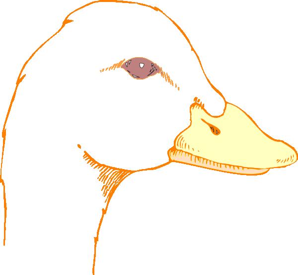 Duck Head Drawing Clip Art at Clker.com.