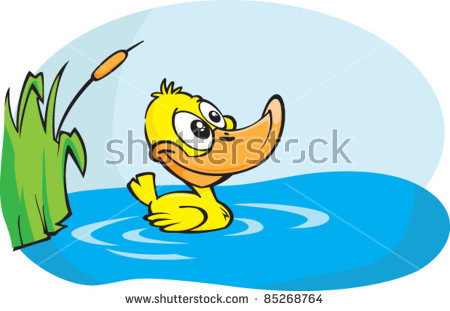 Duck Pond Stock Images, Royalty.