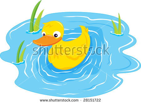 Duck Pond Stock Photos, Royalty.