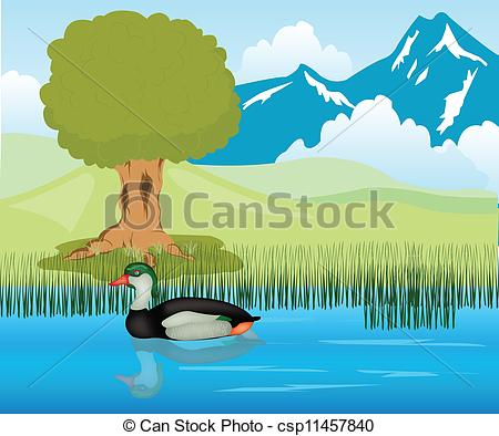 EPS Vector of Duck sails in pond.