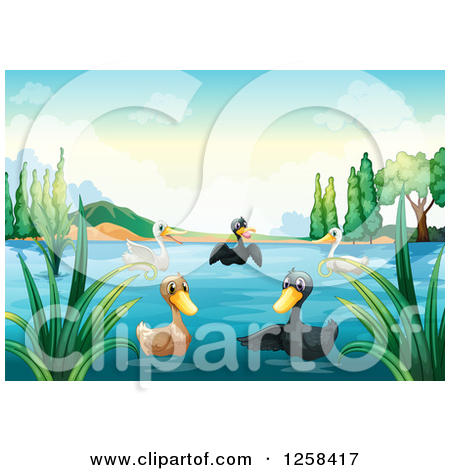 Clipart of a Group of Ducks on a Lake.