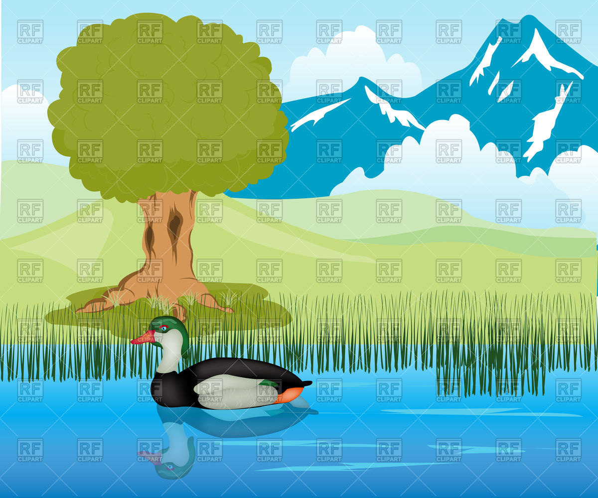 Mountain landscape with duck on lake Vector Image #91933.