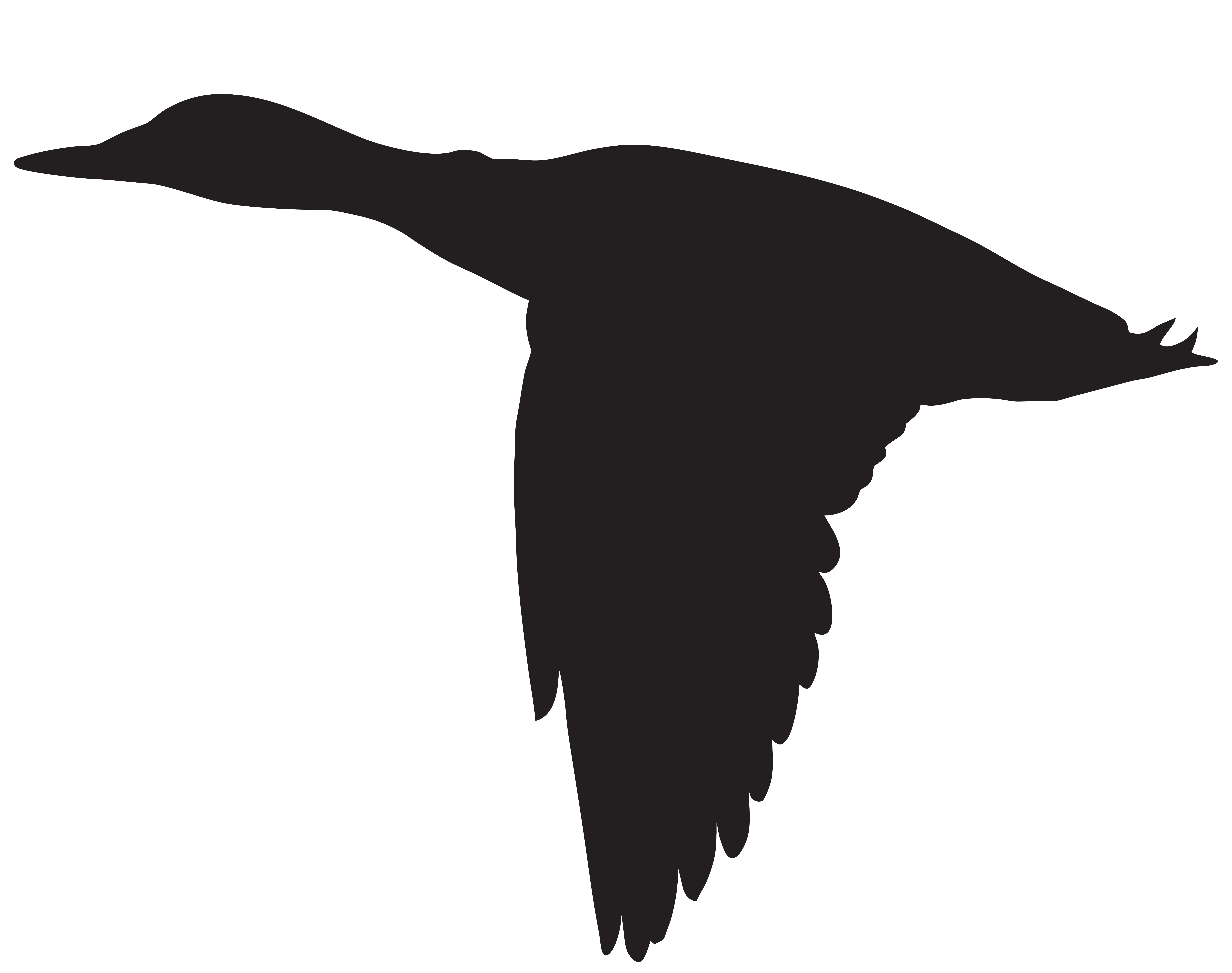 Duck Flying Silhouette PNG Clip Art Image.