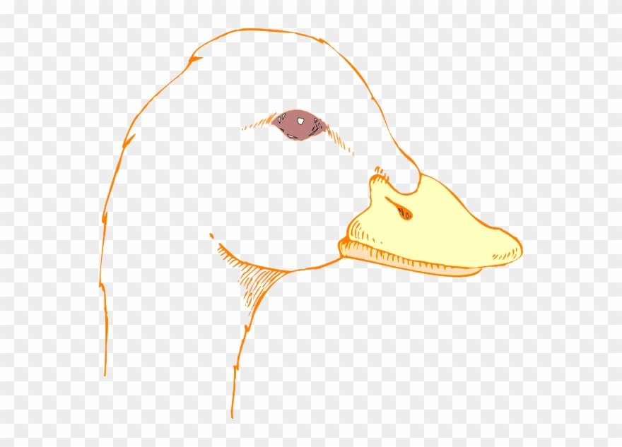 Duck Drawing Cliparts.