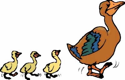 Duck And Ducklings Clipart.