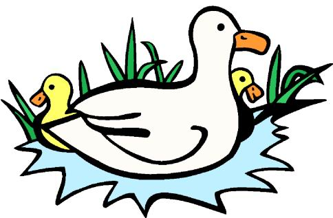 Ducklings Clipart.
