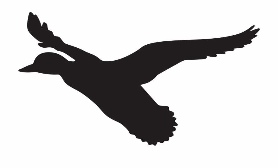Flying Duck Silhouette Png Clip Art Imageu200b Gallery.