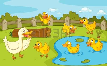 8,429 White Duck Stock Vector Illustration And Royalty Free White.