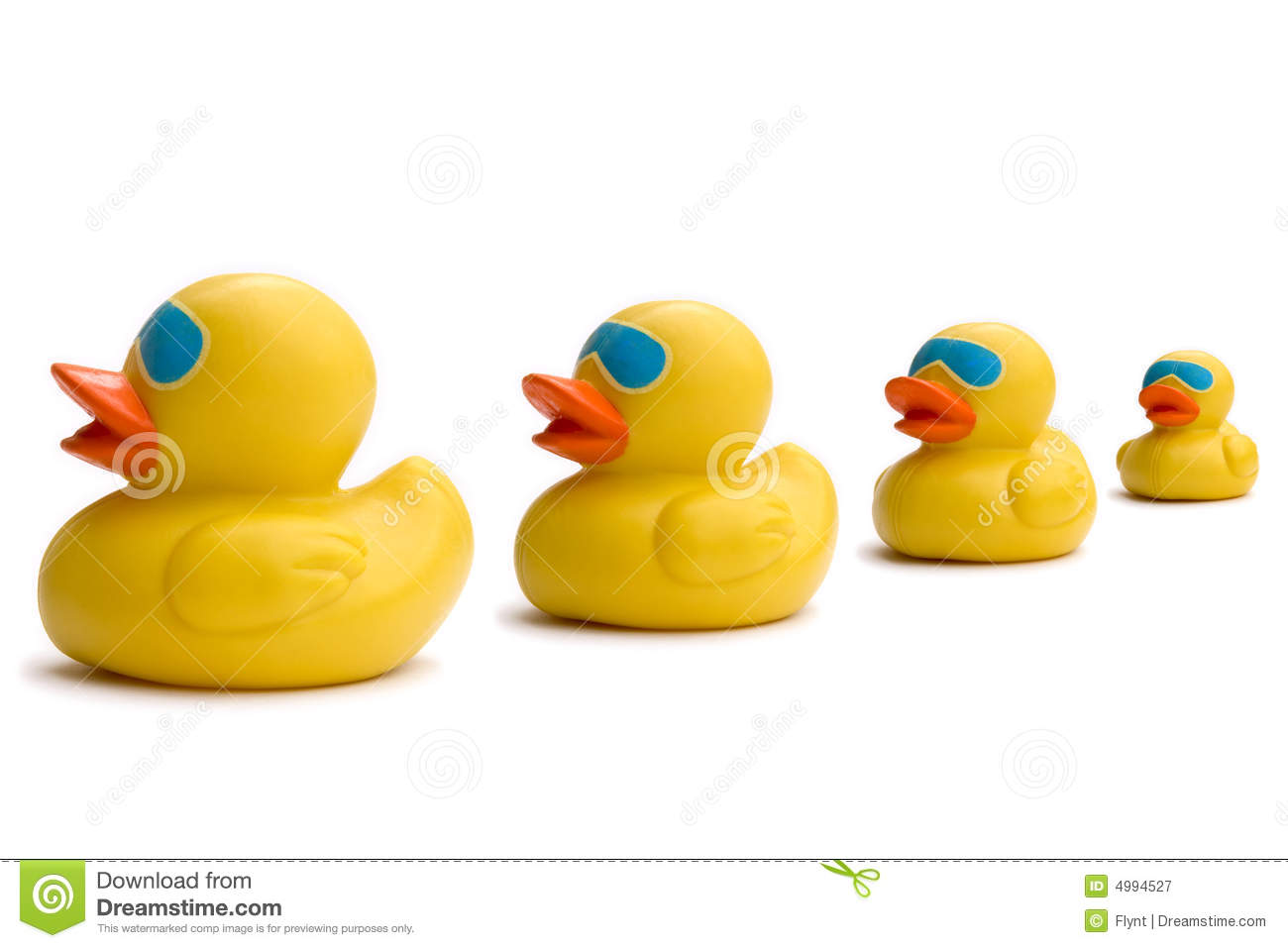 Ducks Row Stock Photos, Images, & Pictures.