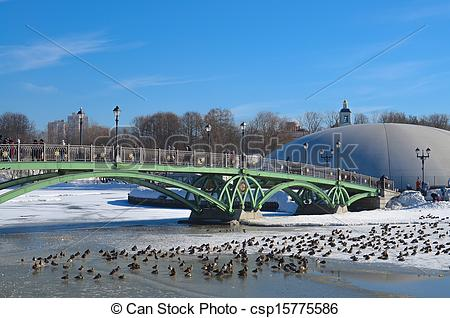 Pictures of Winter, bridge and ducks.