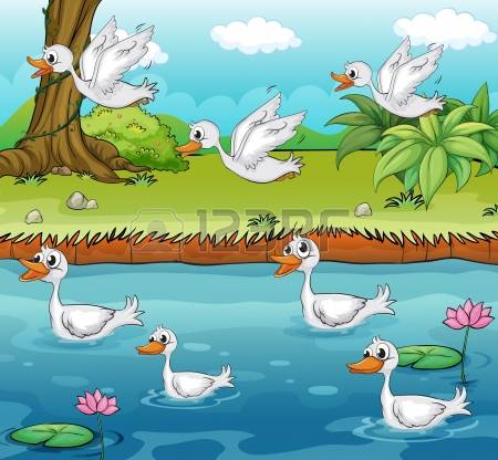 2,386 Duck Clipart Stock Vector Illustration And Royalty Free Duck.