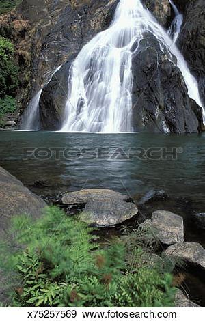 Stock Photograph of India, Goa, Dudhsagar Falls x75257569.