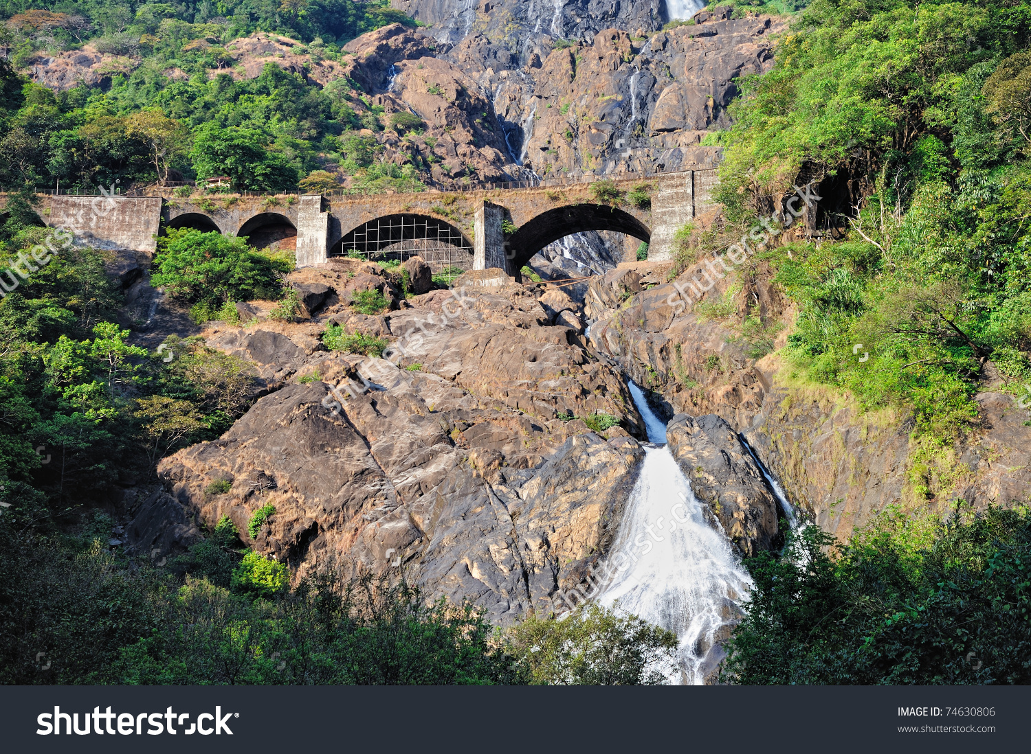 Waterfall Dudhsagar In Goa. Indian National Park Stock Photo.