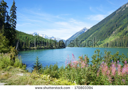 "duffey Lake"" Stock Photos, Royalty."