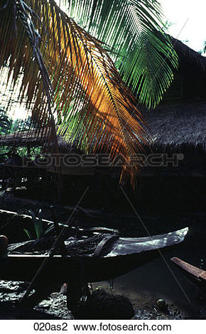 Stock Photo of Dugout Boat under Palm Thailand Asia 020as2.
