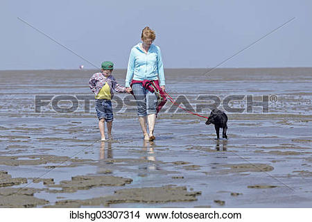 "Stock Photo of ""Mother, son and dog walking in the Wadden Sea."