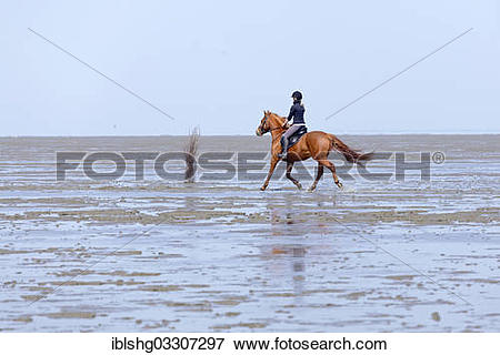 "Picture of ""Horseriding in the mudflats, Duhnen, Cuxhaven, Lower."