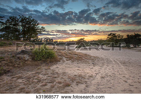 Picture of Shifting Sand Korte duinen k31968577.