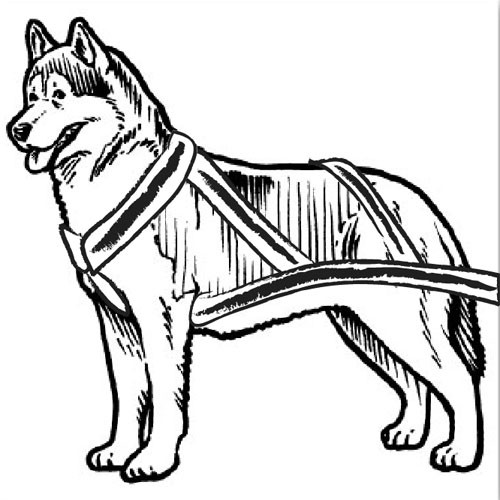 Dog Sled Clipart.