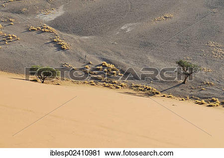 "Stock Photography of ""Early morning mood, view from Dune 45 over."
