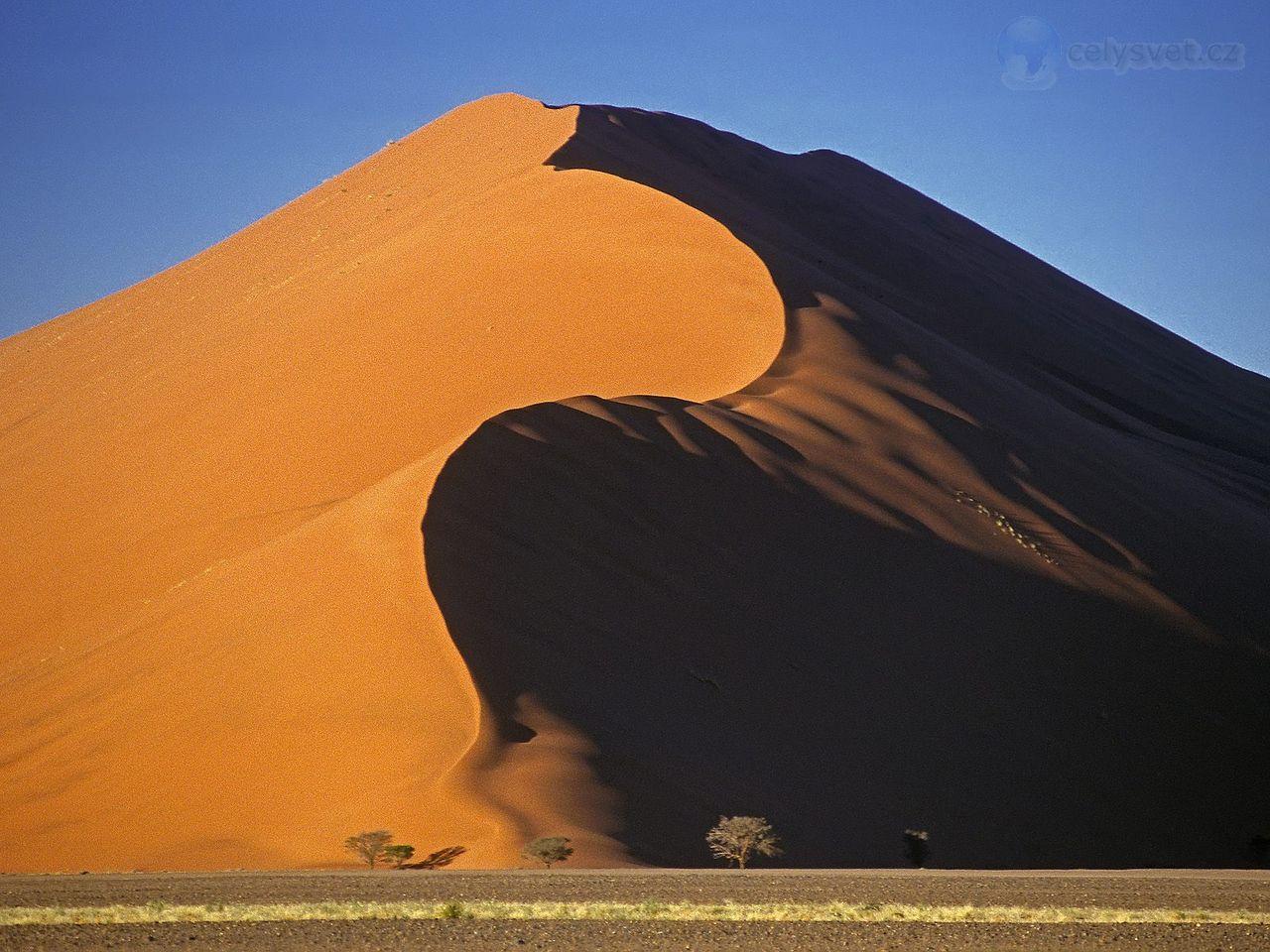 Dune 45, Sossusvlei National Park, Namibia.