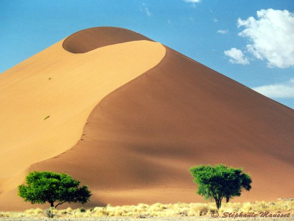 1000+ images about DUNES on Pinterest.