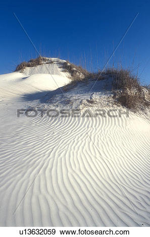 Stock Photograph of Cumberland Island, sand dune, Georgia, sand.