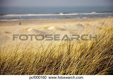 "Stock Photography of ""Germany, Lower Saxony, East Frisian Island."