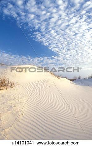 Stock Photography of Cumberland Island, sand dune, Georgia, sand.