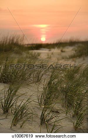 Stock Photograph of Sun setting over beach sand dune on Bald Head.