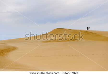 Dune Of Pilat Stock Photos, Royalty.