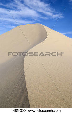 Stock Photography of Curving ridge of a sand dune, Nevada, USA.